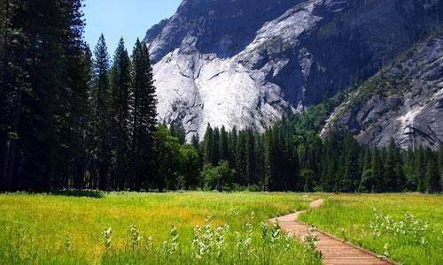 The Hiking Trails