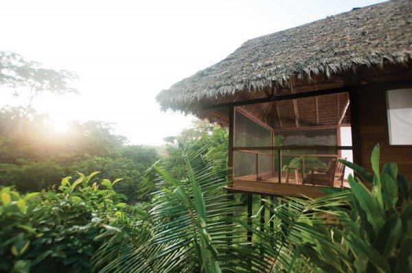 Inkaterra Canopy Tree House in Puerto Maldonado, Peru