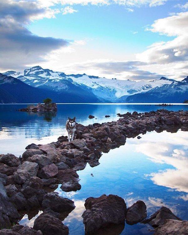 sky, nature, sea, shore, blue,