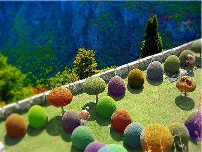 5 Cool Gardening Ideas