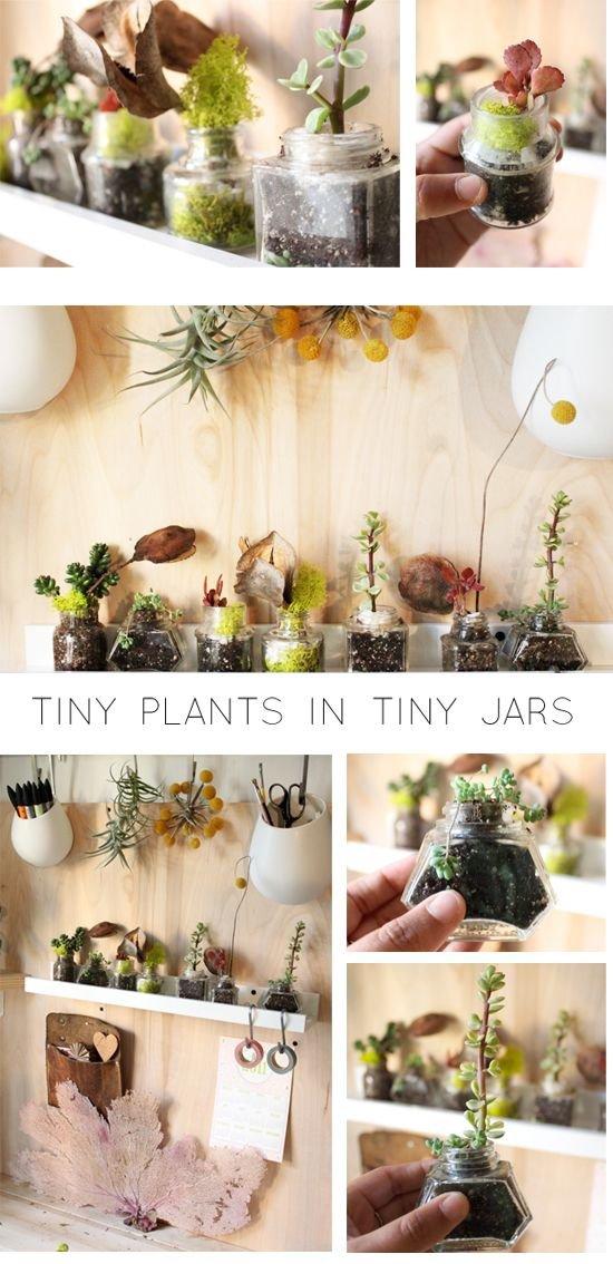 flower arranging,floristry,flower,floral design,TINY,