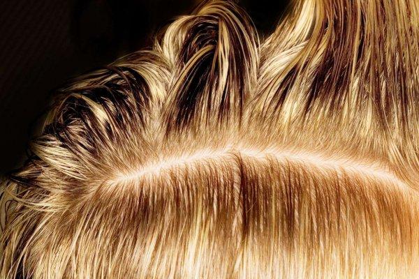 hair, eyebrow, brown, blond, hairstyle,