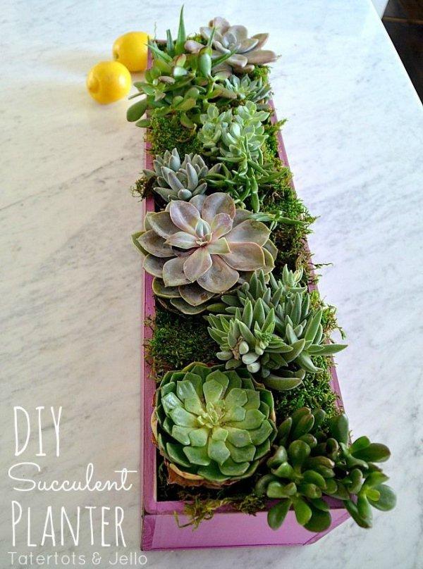 flower arranging,floristry,green,flower,plant,