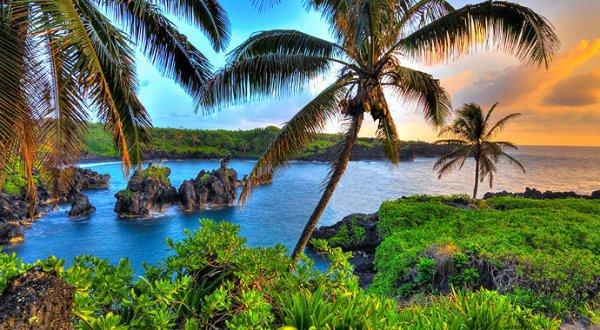 Josephine Skriver Says Aloha to Hawaii
