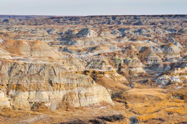 Go Jurassic at Dinosaur Provincial Park