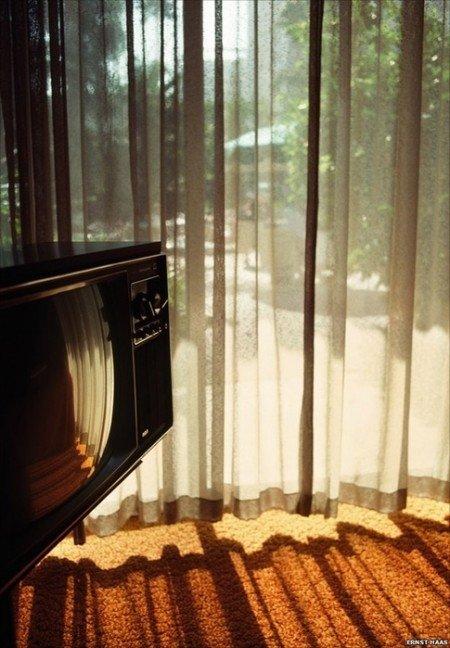 light,wood,floor,interior design,morning,