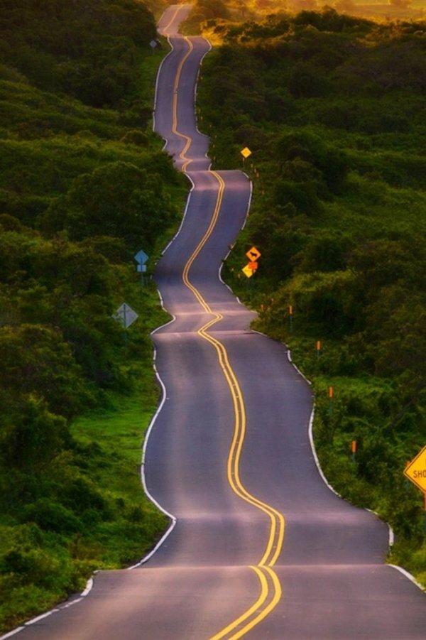 Drunk Highway, Maui