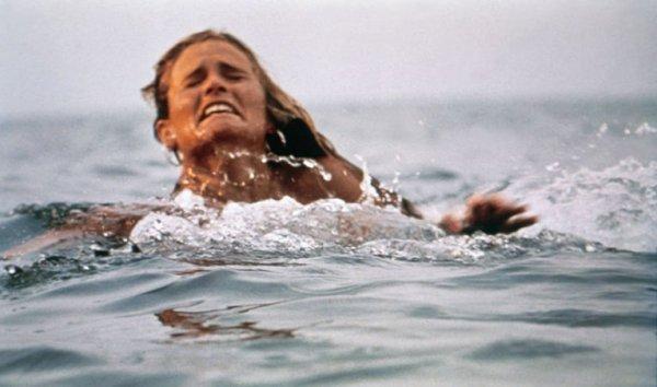 water sport, wind wave, sports, ocean, sea,