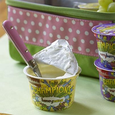 All Natural Greek Yogurt: Healthy Kids' Lunch Ideas...