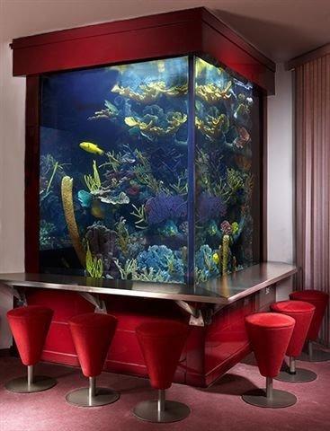 room,interior design,display device,aquarium,