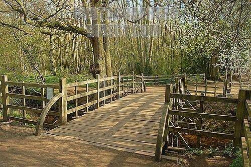 Pooh Sticks Bridge (Winnie the Pooh)