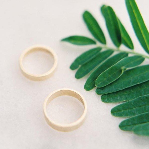 leaf, jewellery,