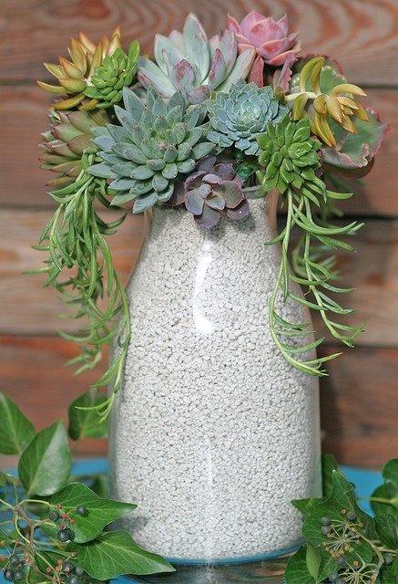 flower arranging,green,floristry,flower,plant,