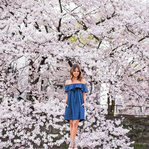 flower, cherry blossom, blossom, plant, tree,
