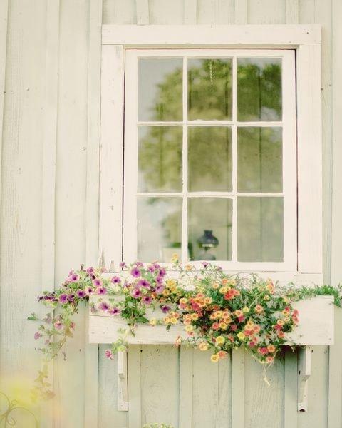 green,window,interior design,sash window,window covering,