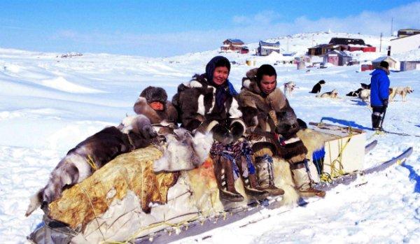 Inuit Population