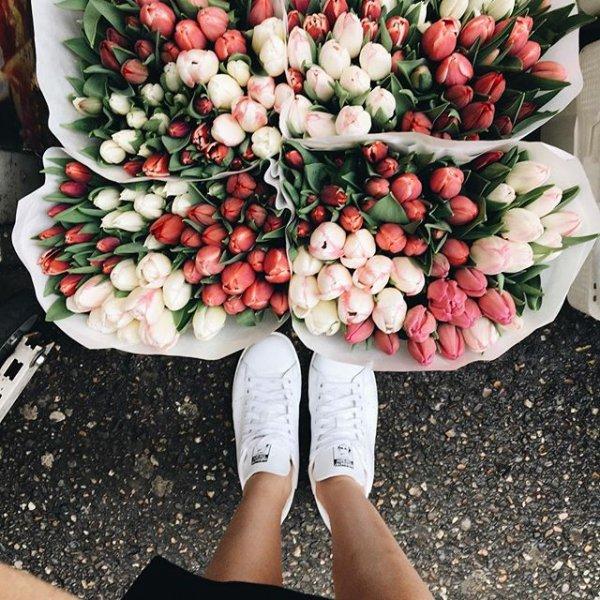 flower, flower arranging, flower bouquet, plant, floristry,