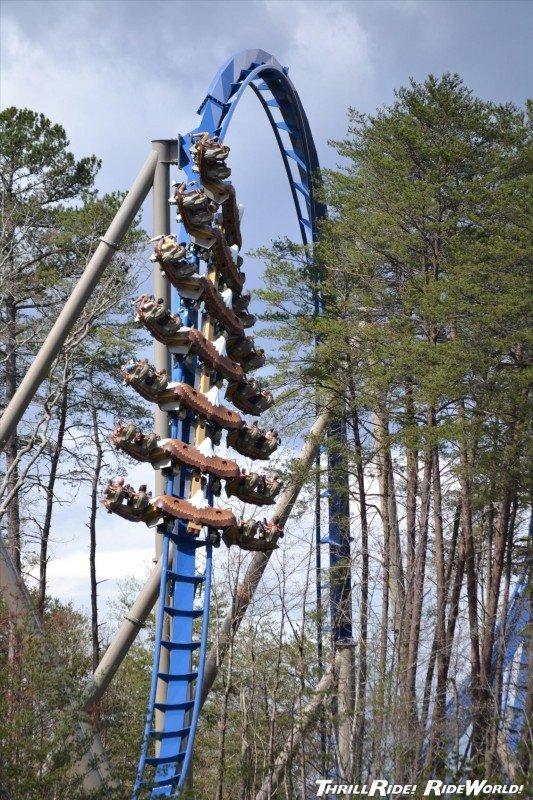amusement park,amusement ride,park,roller coaster,tree,