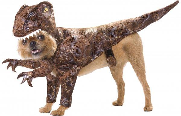 Raptor Dog Costume, Small
