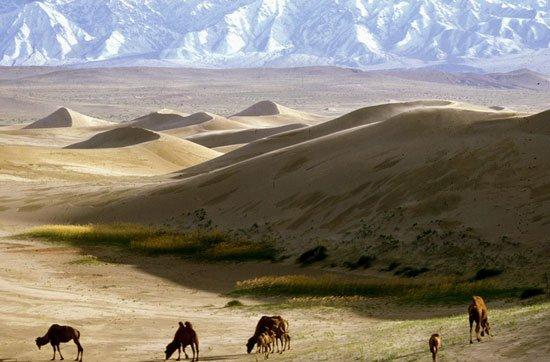 Gurvan Saikhan National Park, Mongolia