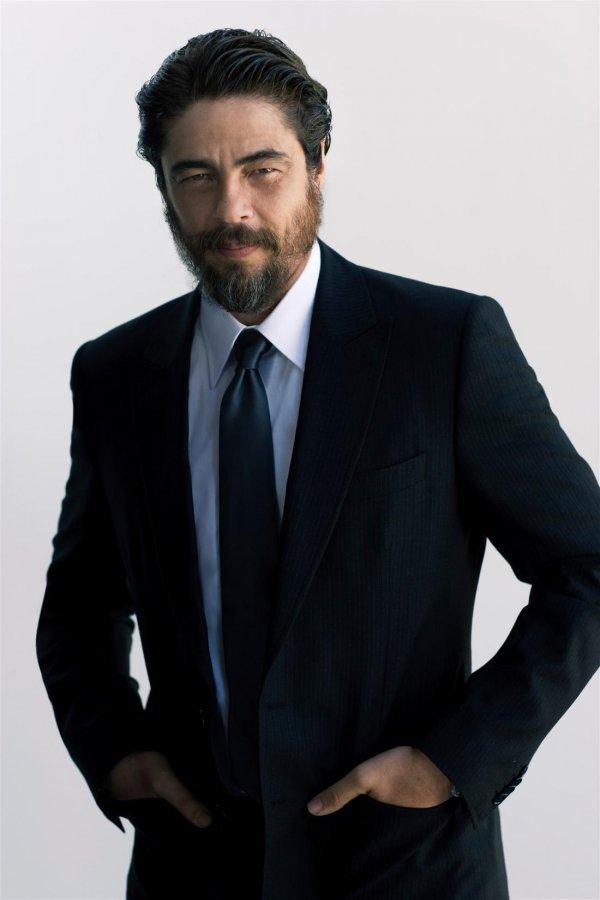 suit, formal wear, tuxedo, blazer, gentleman,