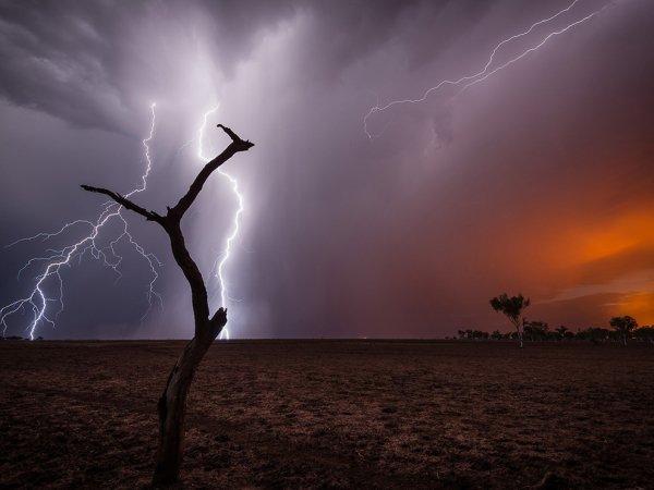 Bushfire Season by Pierre Destribats