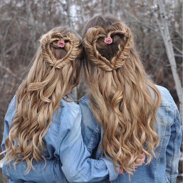 hair, pet, dog, mammal, hairstyle,