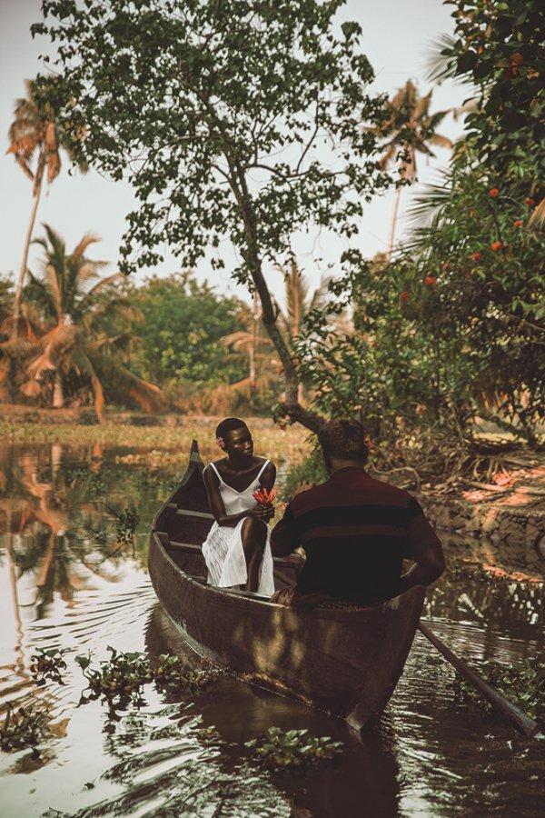 plant, tree, leaf, boat, boating,