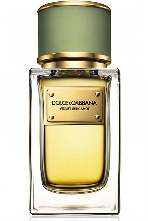 Velvet Bergamot by Dolce & Gabbana