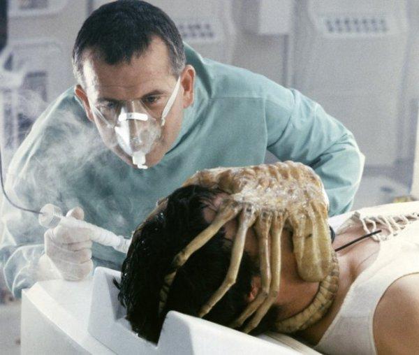 biology, head, organ, jaw, seafood,