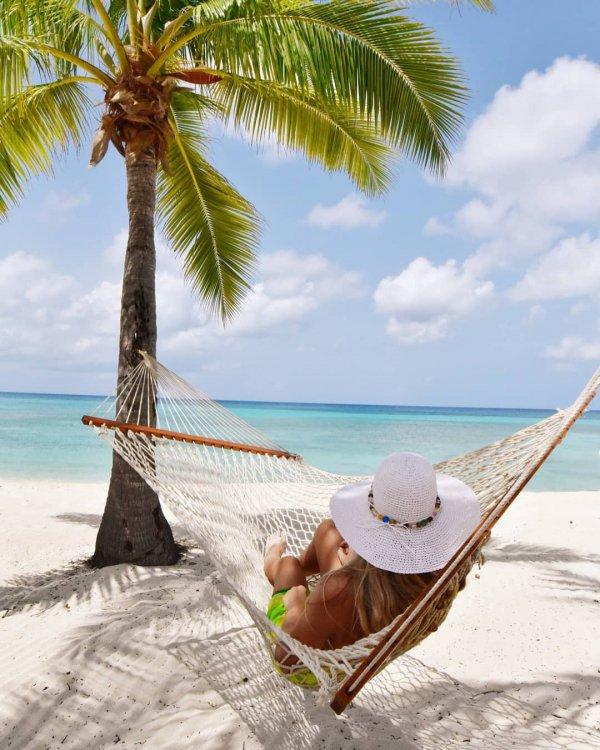 caribbean, vacation, tropics, hammock, palm tree,