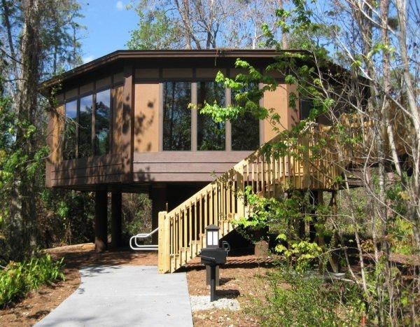 Treehouse Villas at Saratoga Springs Resort & Spa - Disneyworld, USA