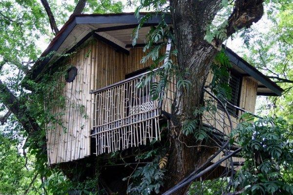Pasonanca Park Treehouse - Mindanao, the Philippines