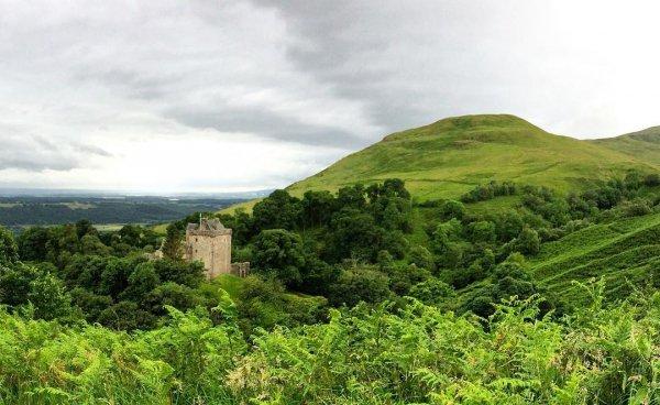 vegetation, highland, nature reserve, hill station, hill,
