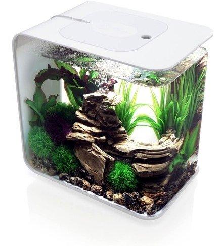 15L Flow Aquarium, White