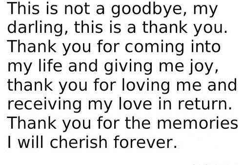 Not a Goodbye