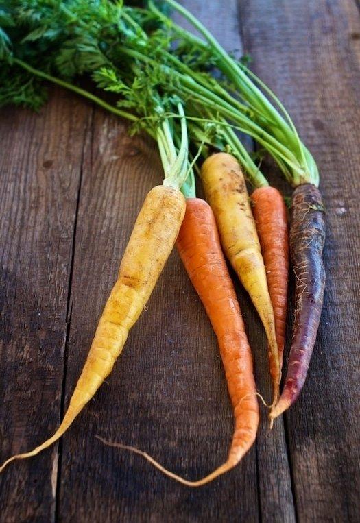 Carrot Greens (tops)