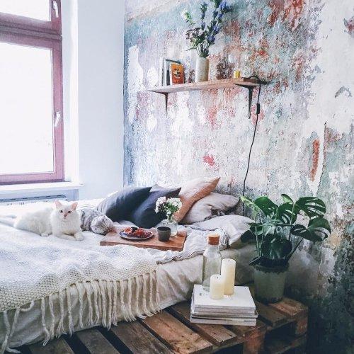 room, living room, wall, furniture, floor,