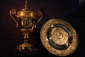The Wimbledon Trophies