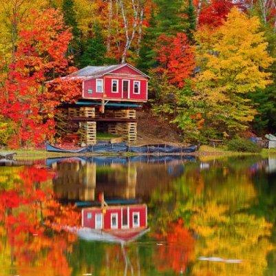 reflection, nature, leaf, waterway, autumn,