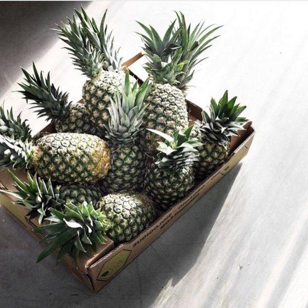 Pineapple, Ananas, Fruit, Plant, Houseplant,