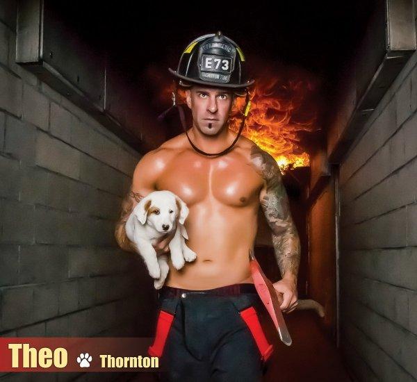muscle, Theo, Thornton, E73,