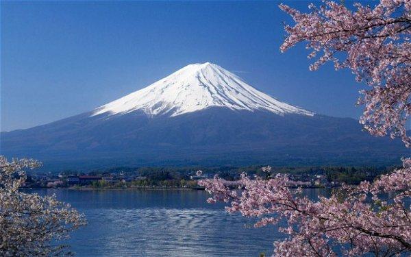 Everything else, Japan
