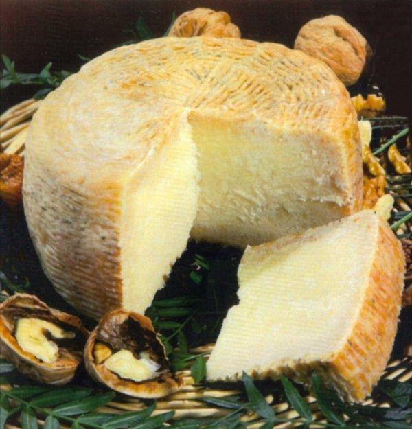 Italian Pecorino – Sheep's Milk