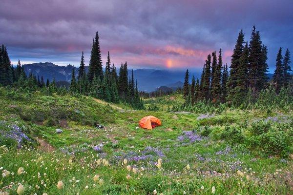 Don't Have a Melt-down at Mount Rainier National Park, Washington