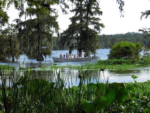 Cajun Country, Louisiana