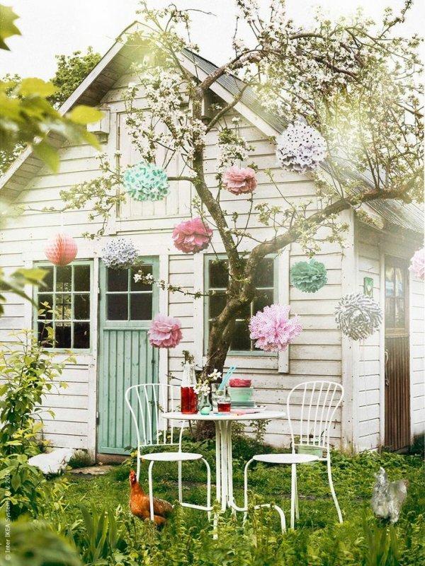 flower,flower arranging,floristry,plant,aisle,