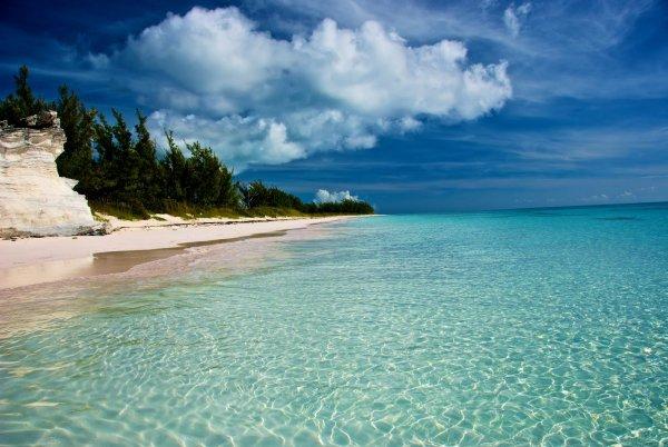 Shell Harvests on Eluthera Island, the Bahamas