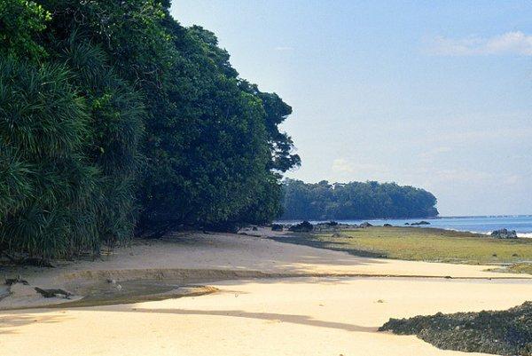 Be Robinson Crusoe at Rutland Island in Andaman