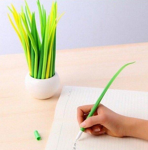 green,plant,grass family,flower,hand,